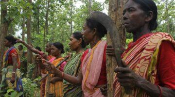 Le donne Adivasi